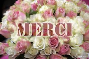 merci_rose